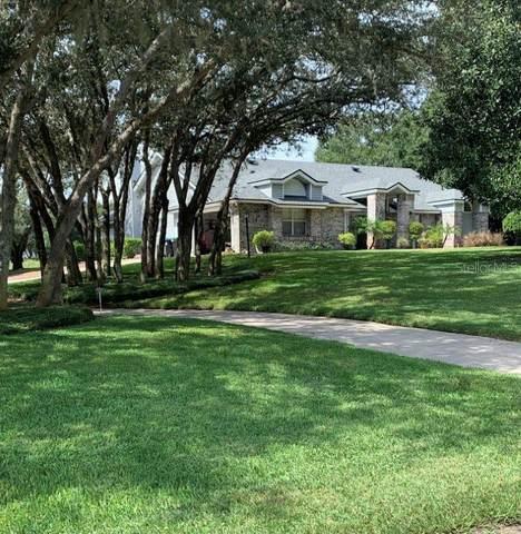 544 Spring Hollow Boulevard, Apopka, FL 32712 (MLS #O5977946) :: Expert Advisors Group