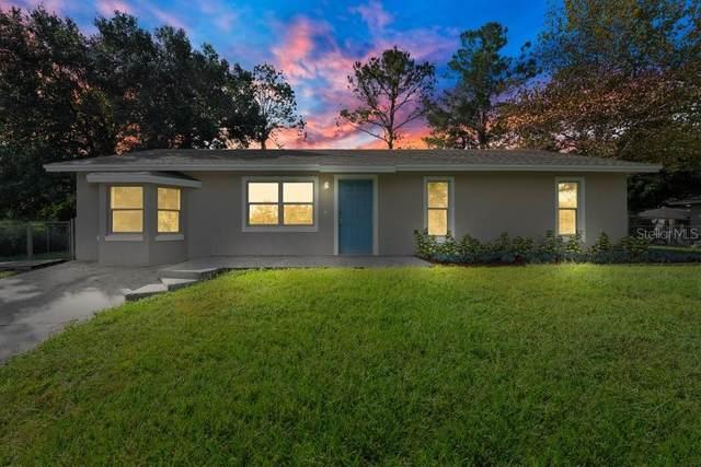 3444 Valeview Drive, Apopka, FL 32712 (MLS #O5978151) :: Orlando Homes Finder Team
