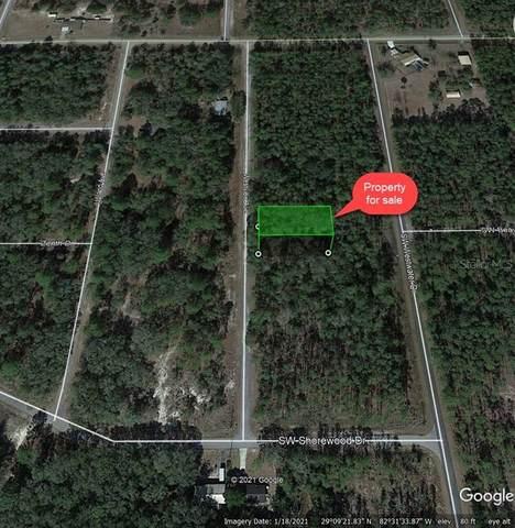Westview Avenue, Dunnellon, FL 34431 (MLS #O5978208) :: Delgado Home Team at Keller Williams