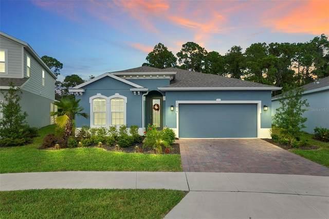17019 Basswood Lane, Clermont, FL 34714 (MLS #O5978285) :: Expert Advisors Group