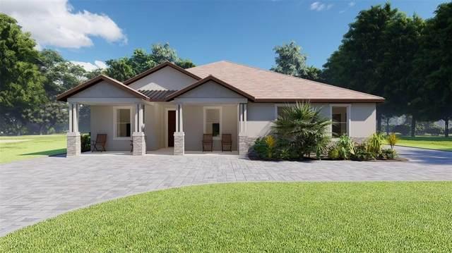 25966 High Hampton Circle, Sorrento, FL 32776 (MLS #O5978352) :: Team Turner