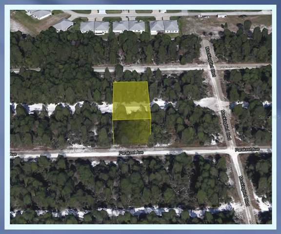 608 Parakeet Avenue, Sebring, FL 33872 (MLS #O5978368) :: Everlane Realty