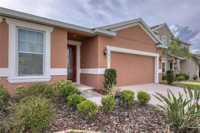 14133 Poke Ridge Drive, Riverview, FL 33579 (MLS #O5978390) :: McConnell and Associates