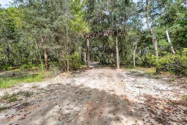Collins Rd, Osteen, FL 32764 (MLS #O5978427) :: Vacasa Real Estate