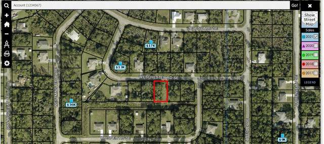1124 SE Weschester Road SE, Palm Bay, FL 32909 (MLS #O5978528) :: Everlane Realty