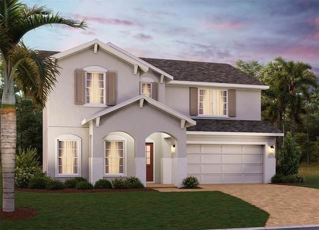 2780 Nottel Drive, Saint Cloud, FL 34772 (MLS #O5978643) :: Orlando Homes Finder Team