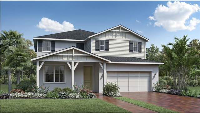 2581 Park Ridge Street, Apopka, FL 32712 (MLS #O5978896) :: Bustamante Real Estate