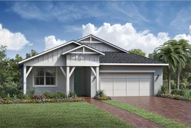 2584 Park Ridge Street, Apopka, FL 32712 (MLS #O5978955) :: Bustamante Real Estate