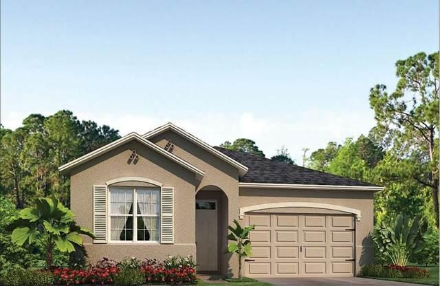 1428 Hopedale Place, Sanford, FL 32771 (MLS #O5978983) :: Everlane Realty