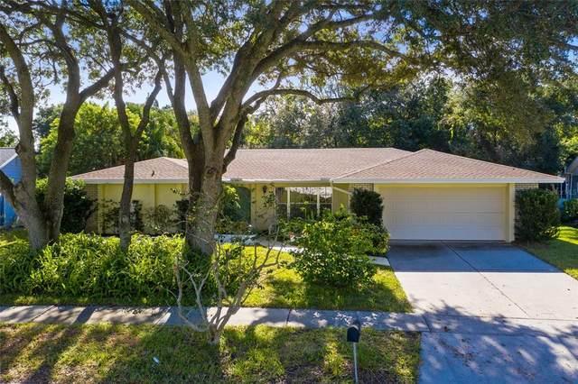 745 Little Wekiva Circle, Altamonte Springs, FL 32714 (MLS #O5978994) :: Bob Paulson with Vylla Home