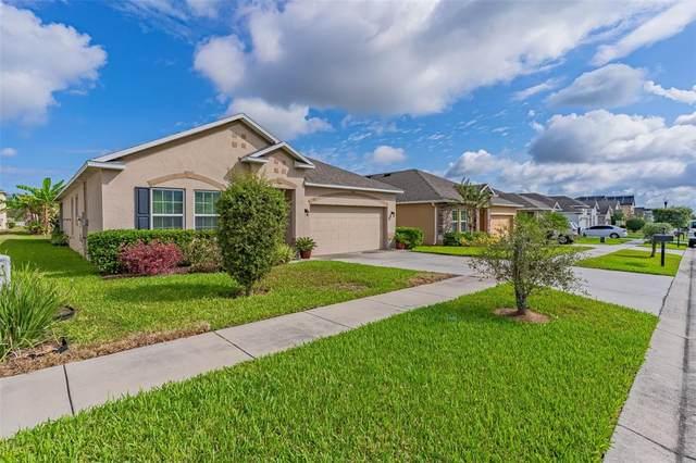 914 Revere Avenue, Haines City, FL 33844 (MLS #O5979194) :: Everlane Realty