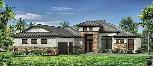 25979 High Hampton Circle, Sorrento, FL 32776 (MLS #O5979231) :: Team Turner