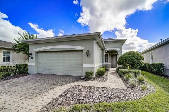 438 Cypress Hills Way, Deland, FL 32724 (MLS #O5979387) :: Everlane Realty
