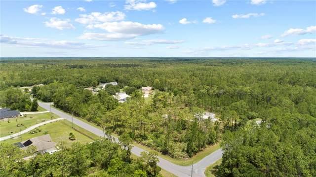 Majestic Street, Orlando, FL 32833 (MLS #O5979414) :: Everlane Realty