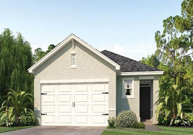 432 Lily Lane, Davenport, FL 33837 (MLS #O5979428) :: Everlane Realty