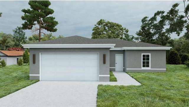 12869 SE 53 TERRACE Road, Belleview, FL 34420 (MLS #O5979582) :: Everlane Realty