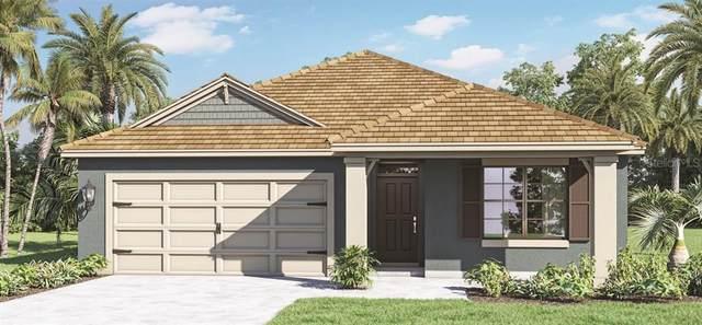 1502 Kempas Road, Mount Dora, FL 32757 (MLS #O5979752) :: Bob Paulson with Vylla Home