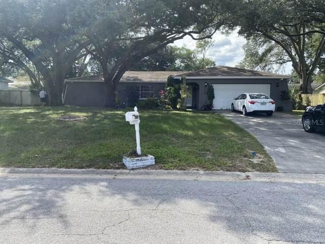 1108 Black Knight Drive, Valrico, FL 33594 (MLS #O5979754) :: Everlane Realty