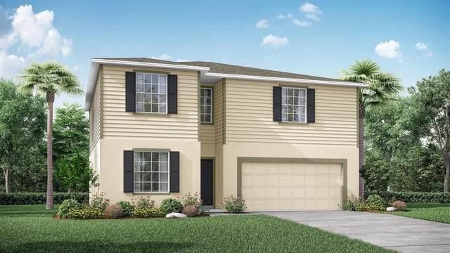 1747 Minnow Court, Poinciana, FL 34759 (MLS #O5979758) :: Bustamante Real Estate