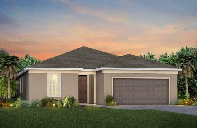 17671 Saw Palmetto Avenue, Clermont, FL 34714 (MLS #O5979789) :: Global Properties Realty & Investments