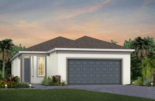 17632 Saw Palmetto Avenue, Clermont, FL 34714 (MLS #O5979813) :: Global Properties Realty & Investments