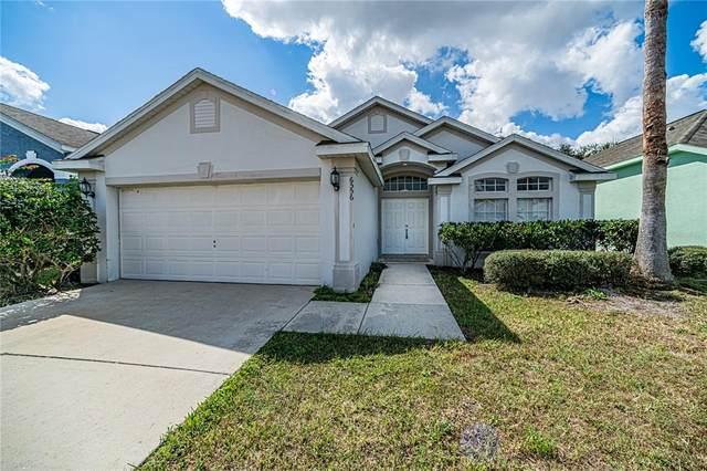 6556 Lake Gloria Shores Boulevard, Orlando, FL 32809 (MLS #O5979885) :: The Heidi Schrock Team