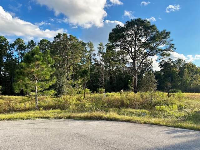 1717 Seabass Lane, Poinciana, FL 34759 (MLS #O5979915) :: The Nathan Bangs Group