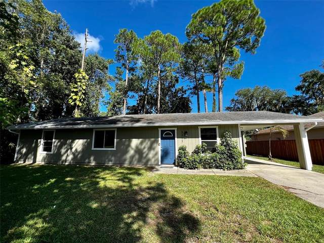 3311 Silver Palm Drive, Edgewater, FL 32141 (MLS #O5979931) :: Cartwright Realty