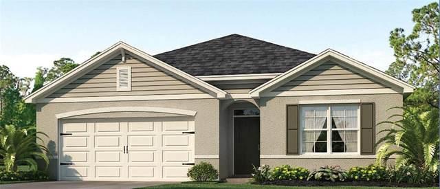 1602 Reddish Egret Court, Davenport, FL 33897 (MLS #O5979961) :: Global Properties Realty & Investments