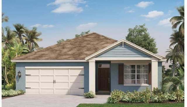 1498 Kempas Road, Mount Dora, FL 32757 (MLS #O5979997) :: Bob Paulson with Vylla Home