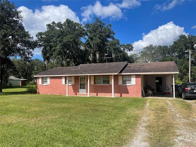 2602 Williams Road, Plant City, FL 33565 (MLS #O5980036) :: Everlane Realty