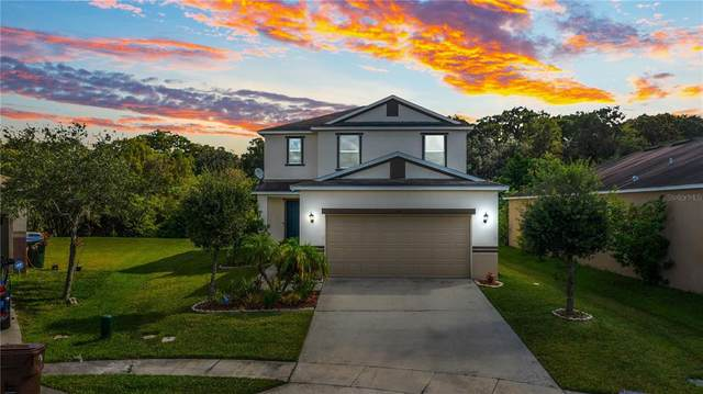 1546 Nature Trail, Kissimmee, FL 34746 (MLS #O5980065) :: Baird Realty Group
