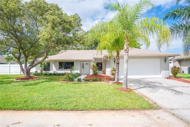 2340 Alabaster Avenue, Orlando, FL 32833 (MLS #O5980100) :: The Nathan Bangs Group