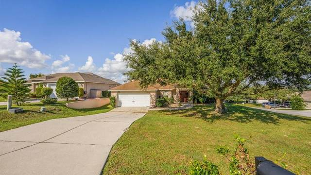 10317 Vista Pines Loop, Clermont, FL 34711 (MLS #O5980203) :: Rabell Realty Group