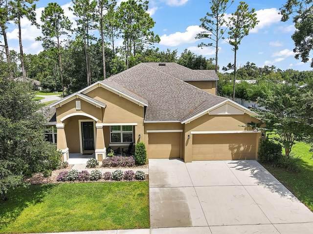 23616 Stream Avenue, Sorrento, FL 32776 (MLS #O5980206) :: Keller Williams Suncoast