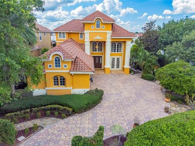 7962 Versilia Drive, Orlando, FL 32836 (MLS #O5980253) :: Everlane Realty