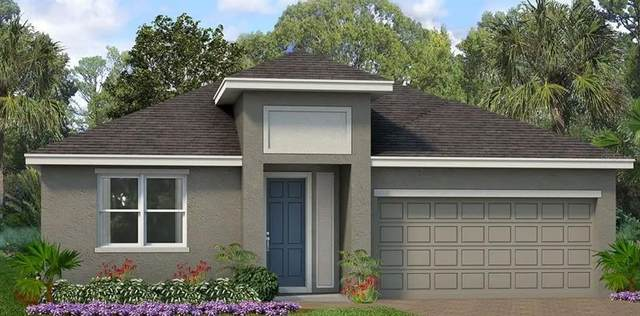 1621 Way Of Peace, Mascotte, FL 34753 (MLS #O5980336) :: RE/MAX Local Expert