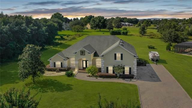 18146 Great Blue Heron Drive, Groveland, FL 34736 (MLS #O5980411) :: Everlane Realty