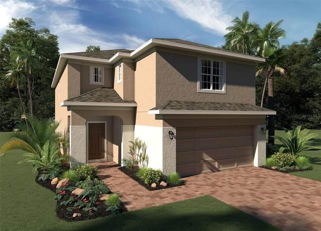 5011 Royal Point Avenue, Kissimmee, FL 34746 (MLS #O5980428) :: Baird Realty Group