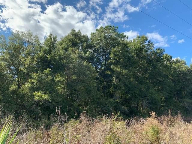 Fairport Avenue, De Leon Springs, FL 32130 (MLS #O5980484) :: Vacasa Real Estate