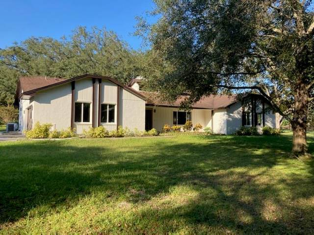 17205 Red Bird Road, Winter Garden, FL 34787 (MLS #O5980533) :: Bustamante Real Estate