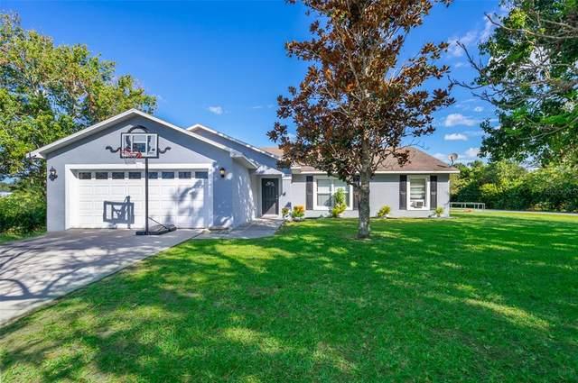 3131 Spikey Way, Kissimmee, FL 34744 (MLS #O5980688) :: Vivian Gonzalez | Ocean Real Estate Group, LLC