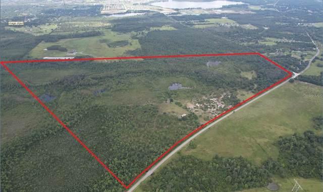 20090 Fort Christmas Rd, Christmas, FL 32709 (MLS #O5980722) :: Griffin Group