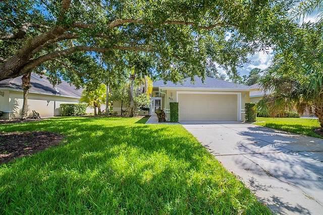 927 Woodstream Lane, Ormond Beach, FL 32174 (MLS #O5980725) :: Griffin Group
