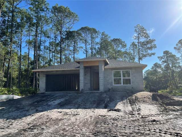 2301 9TH Avenue, Deland, FL 32724 (MLS #O5980813) :: Rabell Realty Group