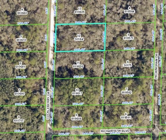 Cockleberry Drive, Webster, FL 33597 (MLS #O5980869) :: Vacasa Real Estate