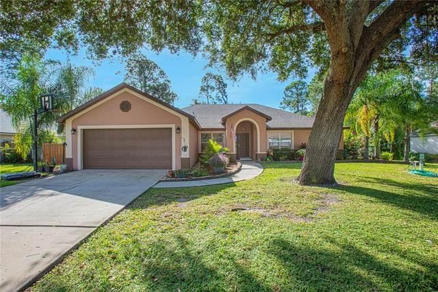 2920 Harvest Lane, Kissimmee, FL 34744 (MLS #O5980892) :: Vivian Gonzalez | Ocean Real Estate Group, LLC