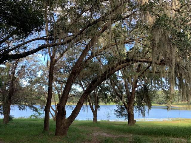225 Forest Park Lane, Lady Lake, FL 32159 (MLS #O5980941) :: The Truluck TEAM