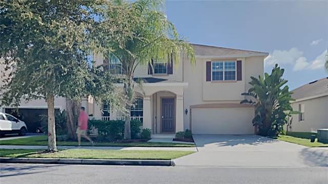 4345 Saltmarsh Sparrow Drive, Windermere, FL 34786 (MLS #O5980969) :: Bustamante Real Estate