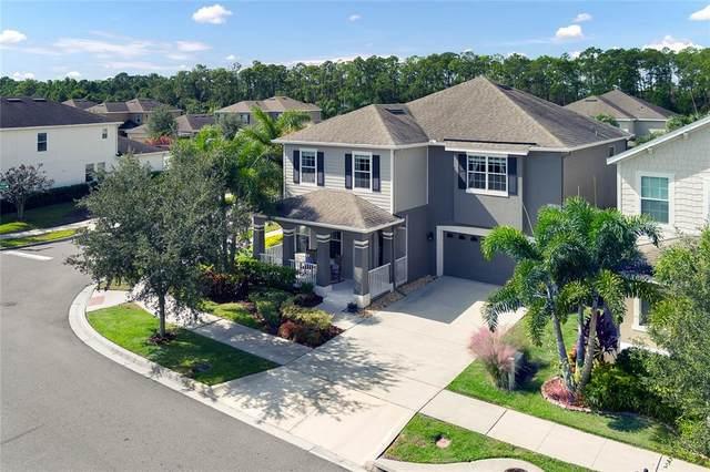 4239 Blue Major Drive, Windermere, FL 34786 (MLS #O5980997) :: Vivian Gonzalez   Ocean Real Estate Group, LLC